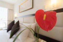 Accommadation, Roosevelt Hotel & Suites, San Isidro, lima